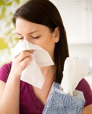 Penészesedés és allergia